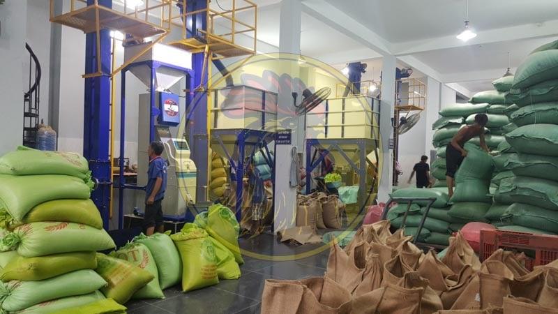 Khung cảnh làm việc tại nhà máy sản xuất cà phê nhân